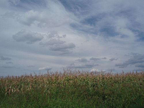 Węgry krajobraz zdjęcie