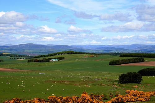 zwiedzanie Szkocji
