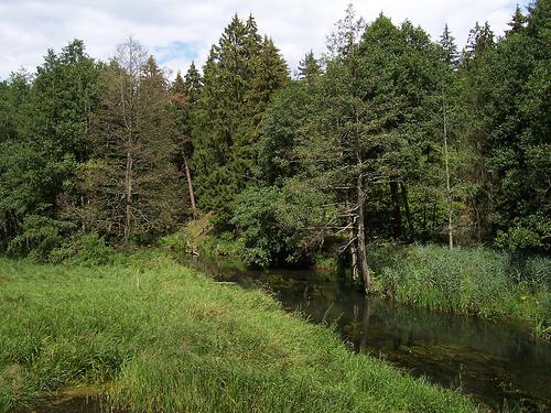 atrakcje doliny Rospudy